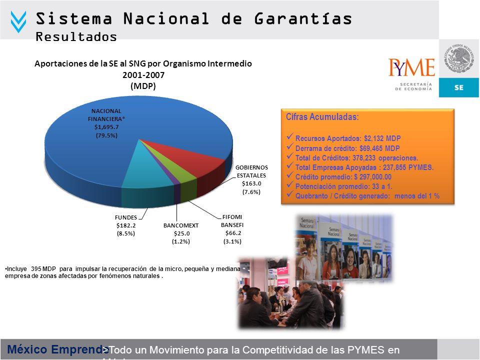 Sistema Nacional de Garantías Resultados