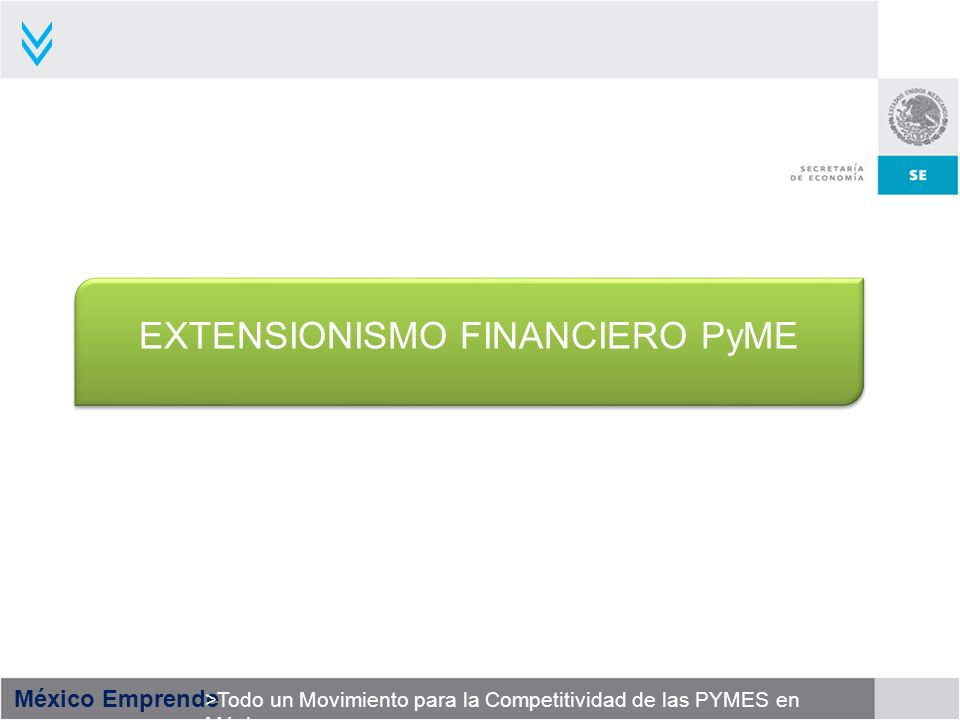 EXTENSIONISMO FINANCIERO PyME