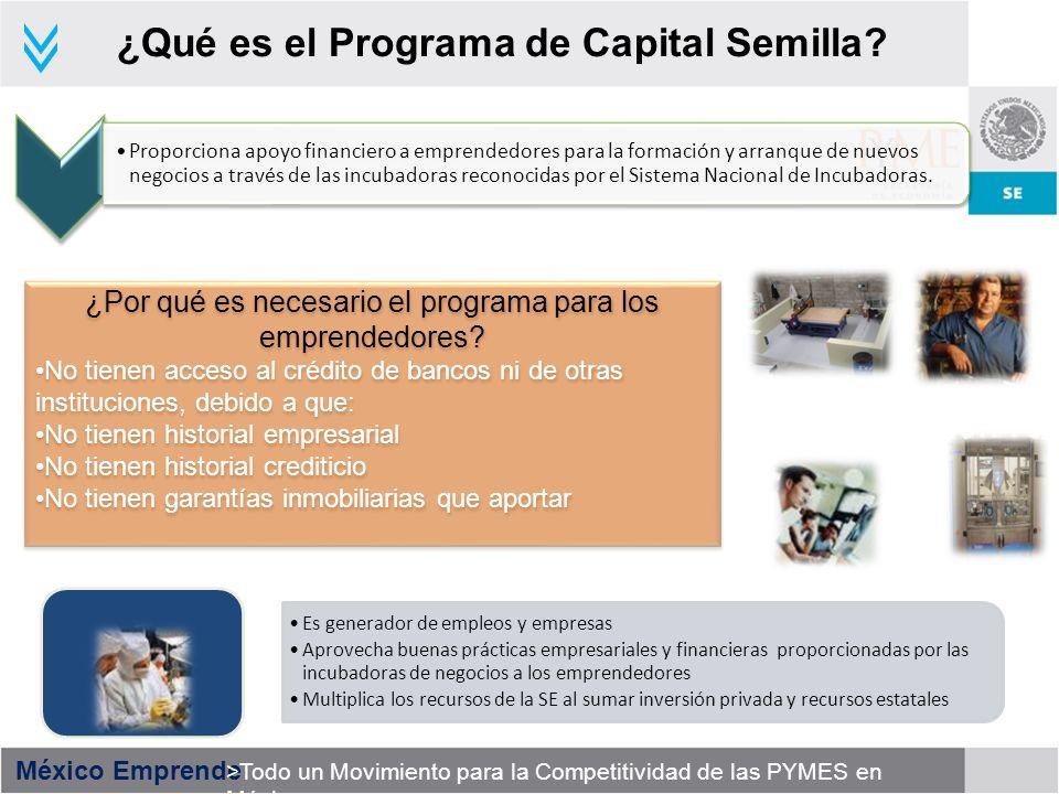 ¿Qué es el Programa de Capital Semilla