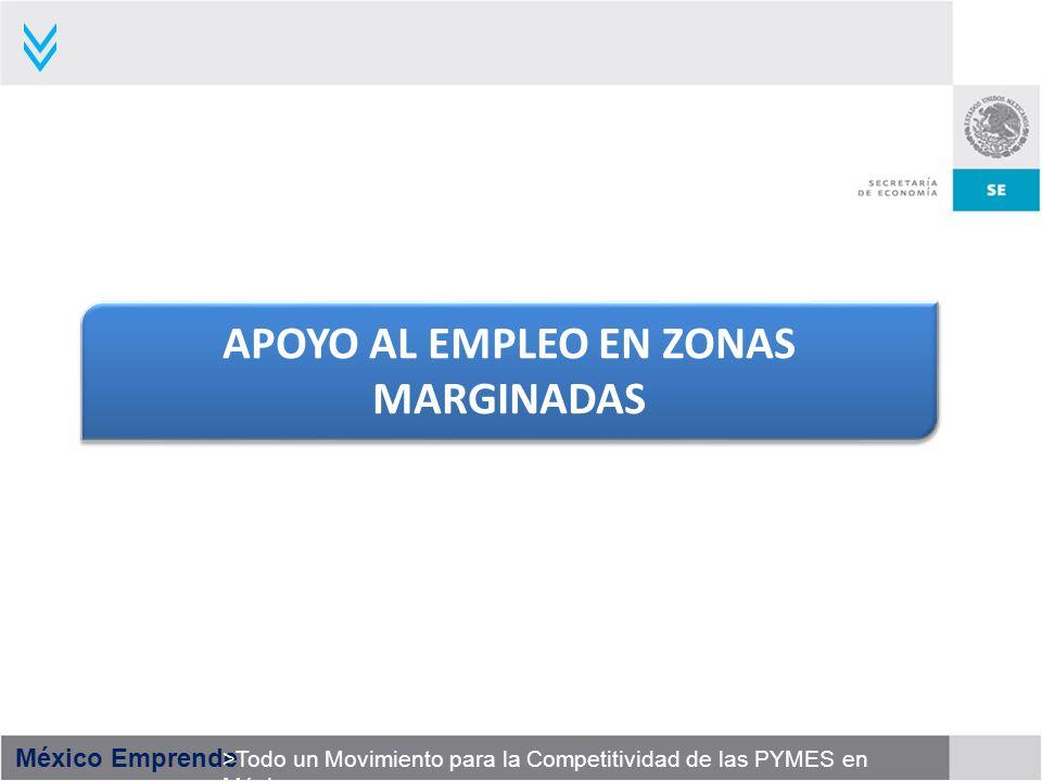 APOYO AL EMPLEO EN ZONAS MARGINADAS