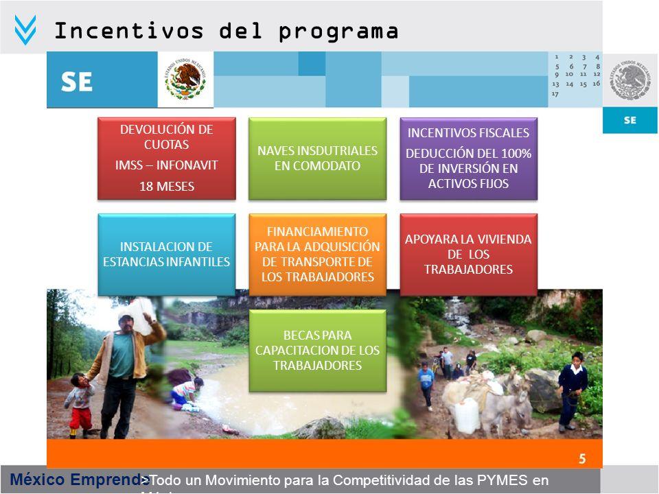 Incentivos del programa