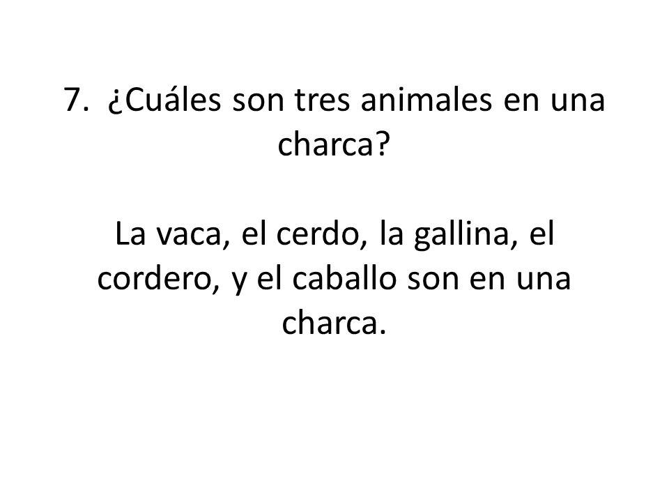 7. ¿Cuáles son tres animales en una charca