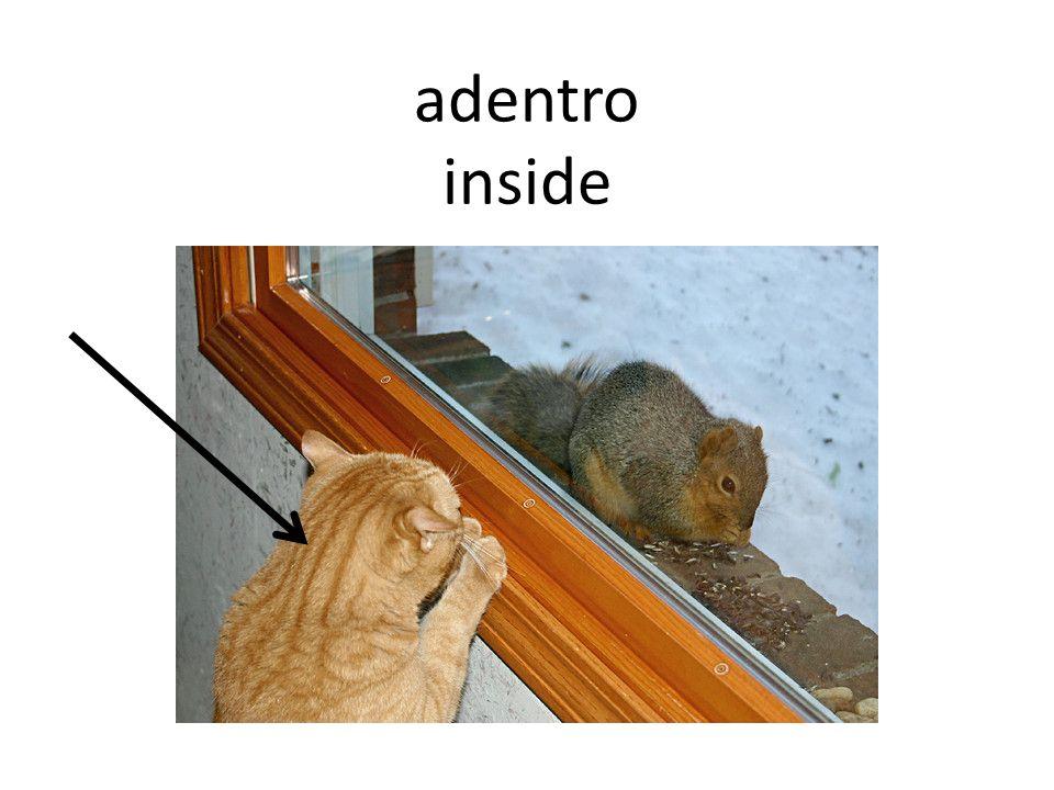 adentro inside