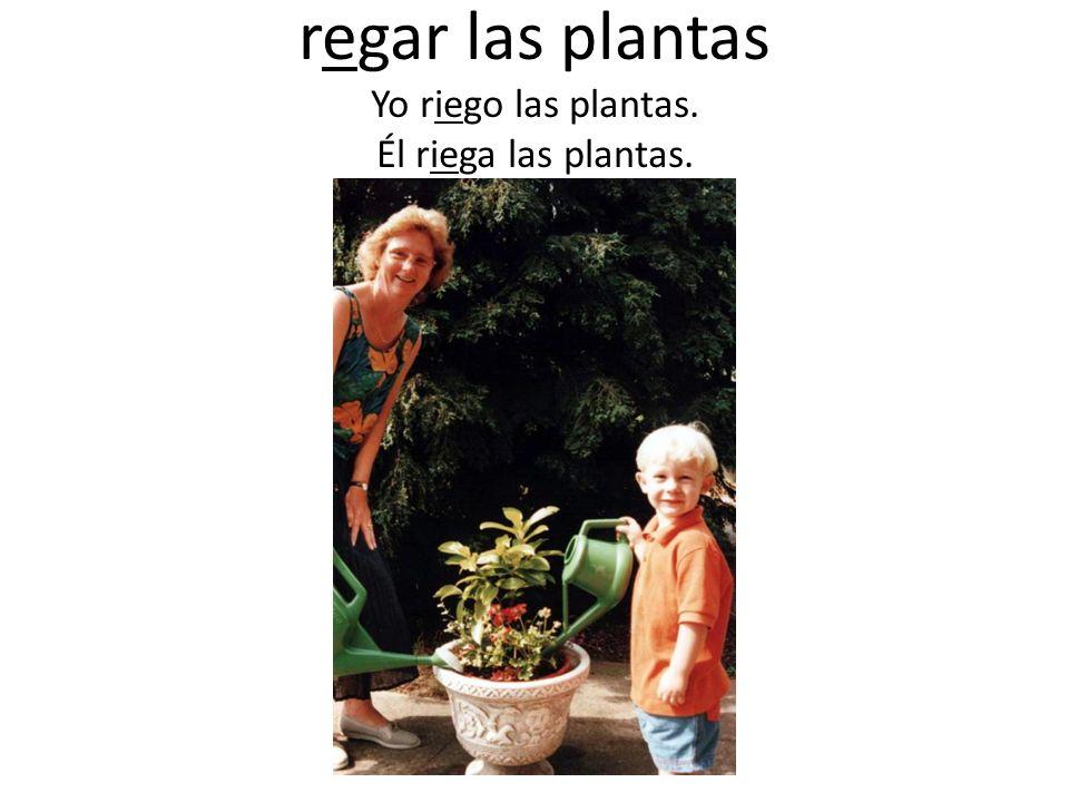 regar las plantas Yo riego las plantas. Él riega las plantas.