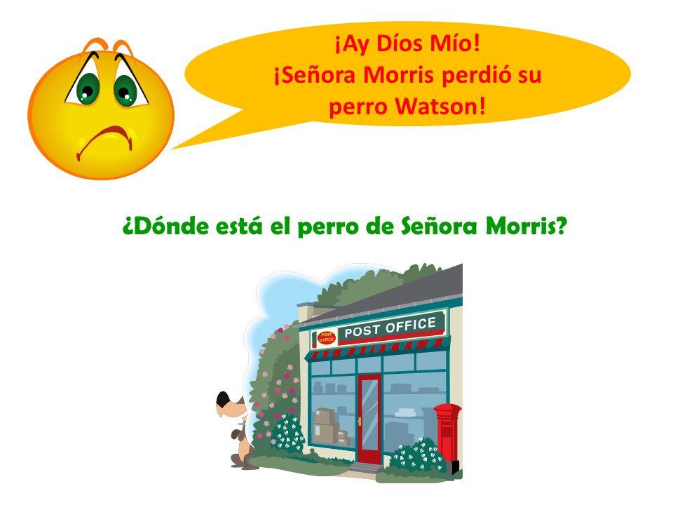 ¡Señora Morris perdió su perro Watson!