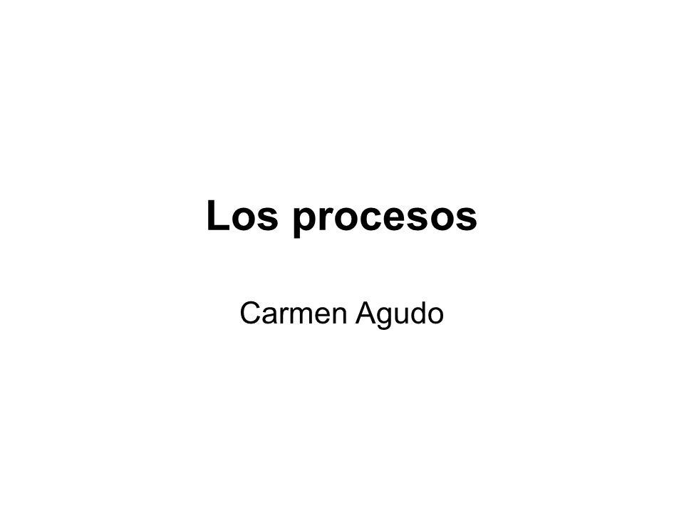 Los procesos Carmen Agudo