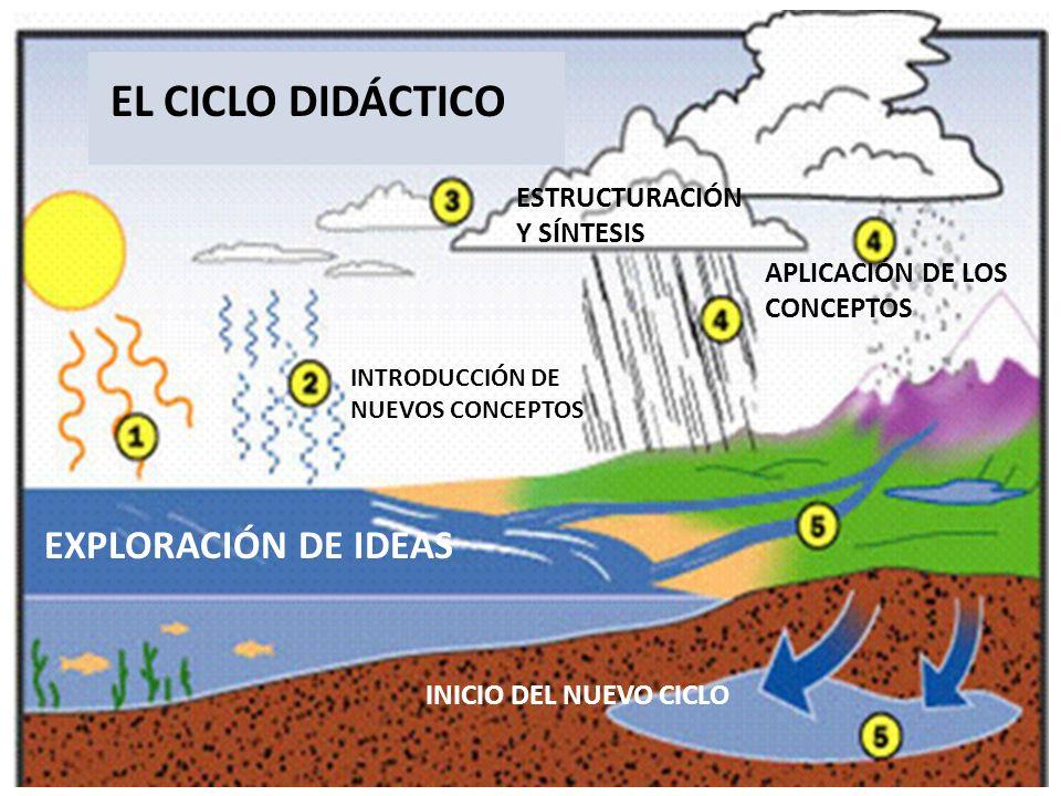EL CICLO DIDÁCTICO EXPLORACIÓN DE IDEAS ESTRUCTURACIÓN Y SÍNTESIS