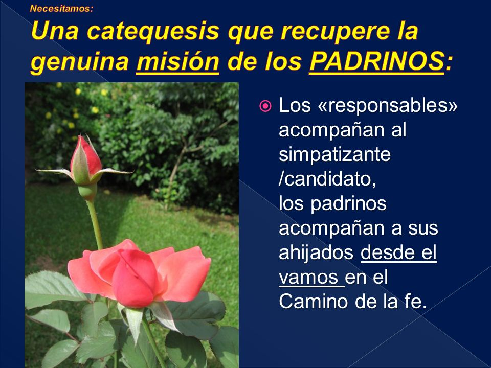 Necesitamos: Una catequesis que recupere la genuina misión de los PADRINOS: