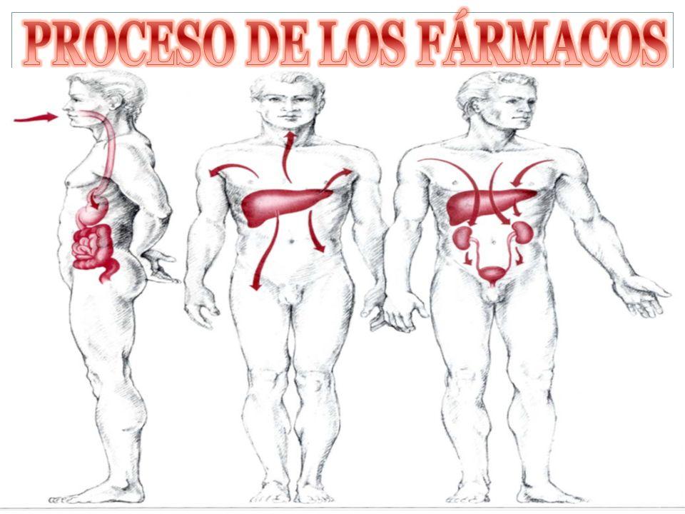 PROCESO DE LOS FÁRMACOS