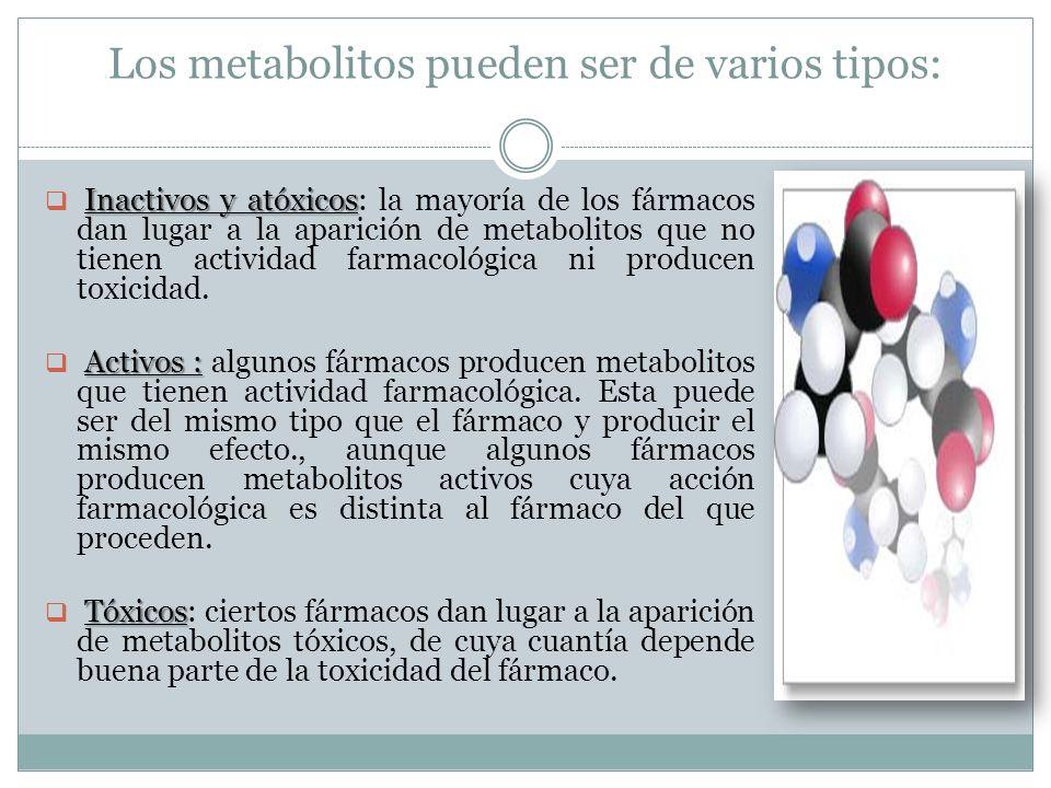 Los metabolitos pueden ser de varios tipos: