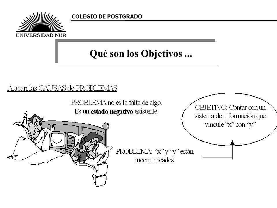 COLEGIO DE POSTGRADO Qué son los Objetivos ...