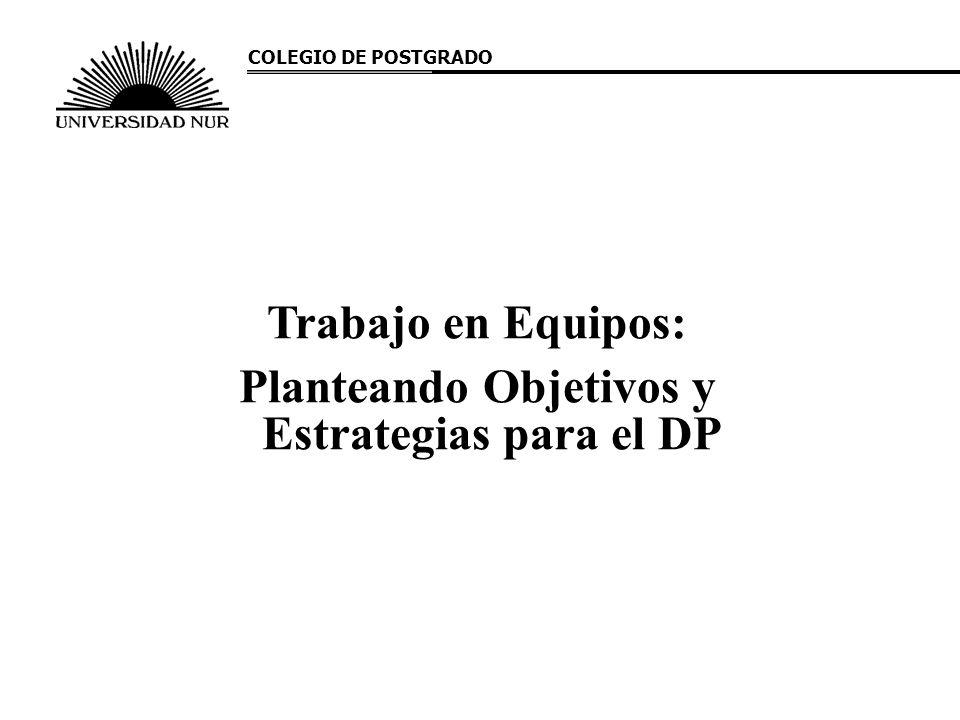 Planteando Objetivos y Estrategias para el DP