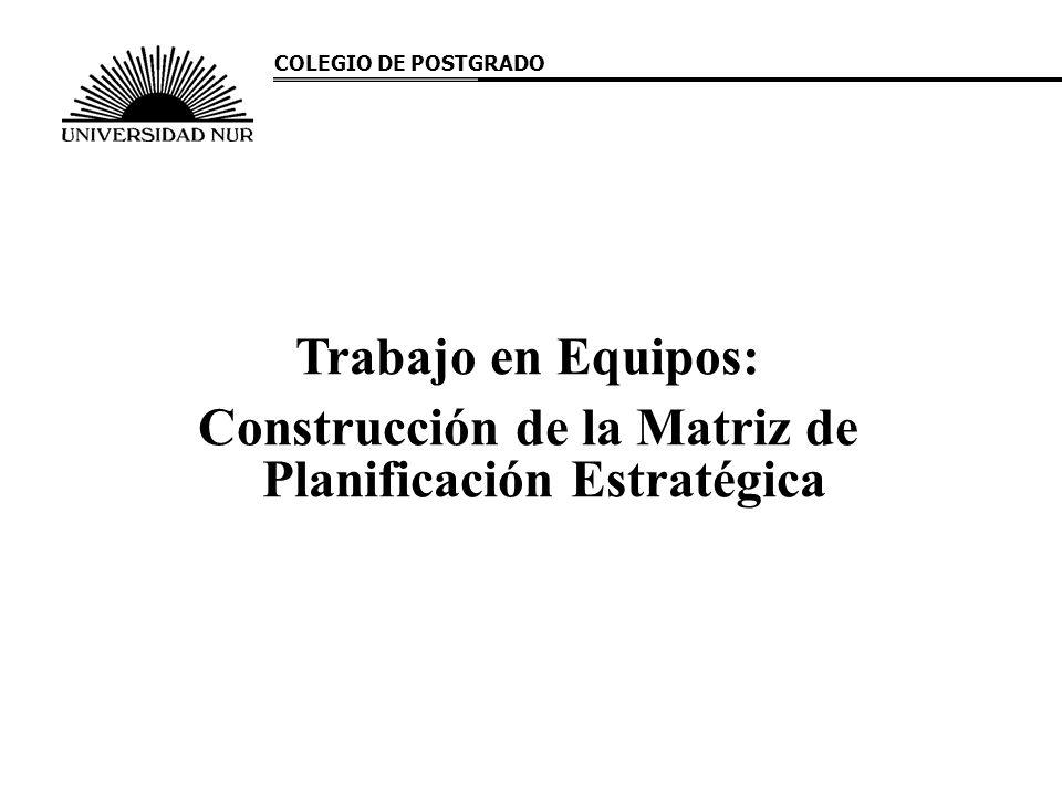 Construcción de la Matriz de Planificación Estratégica