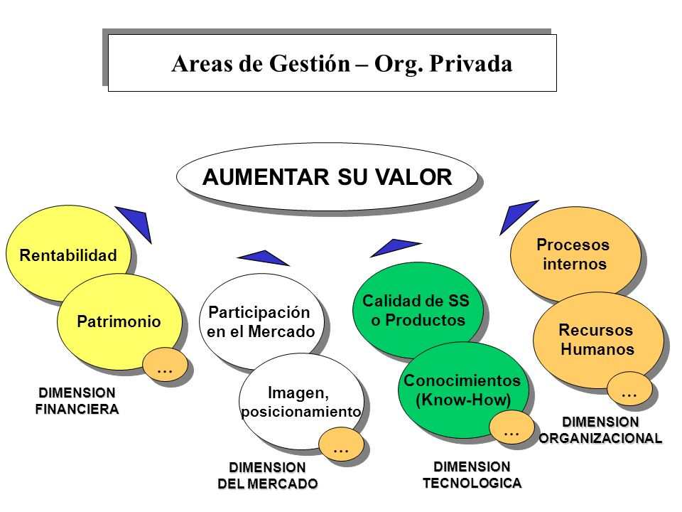 Areas de Gestión – Org. Privada