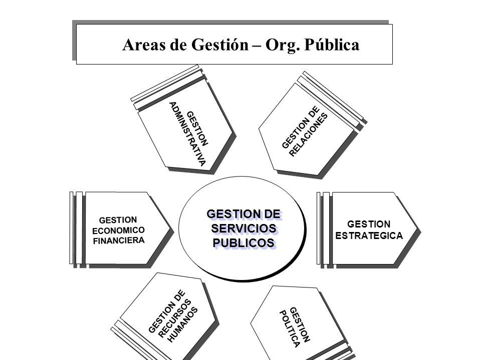 Areas de Gestión – Org. Pública