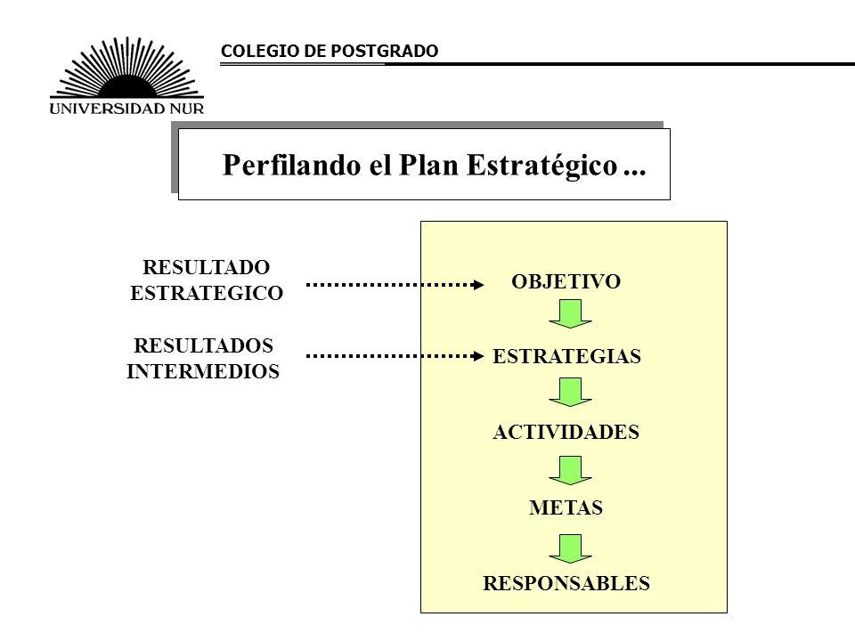 Perfilando el Plan Estratégico ...