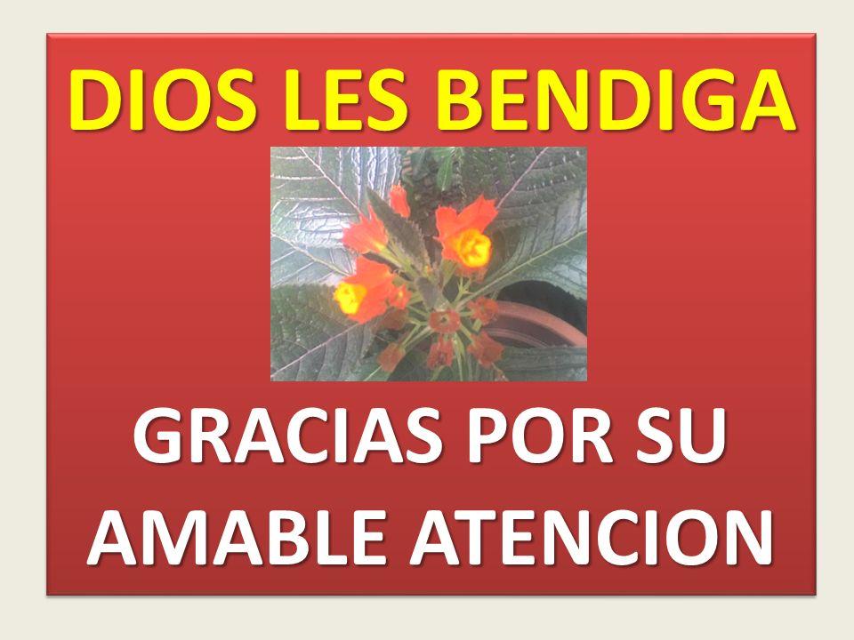 DIOS LES BENDIGA GRACIAS POR SU AMABLE ATENCION