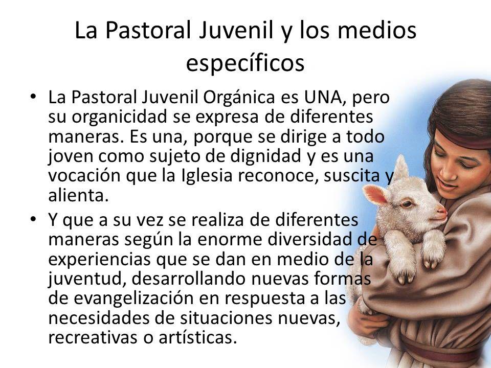 La Pastoral Juvenil y los medios específicos