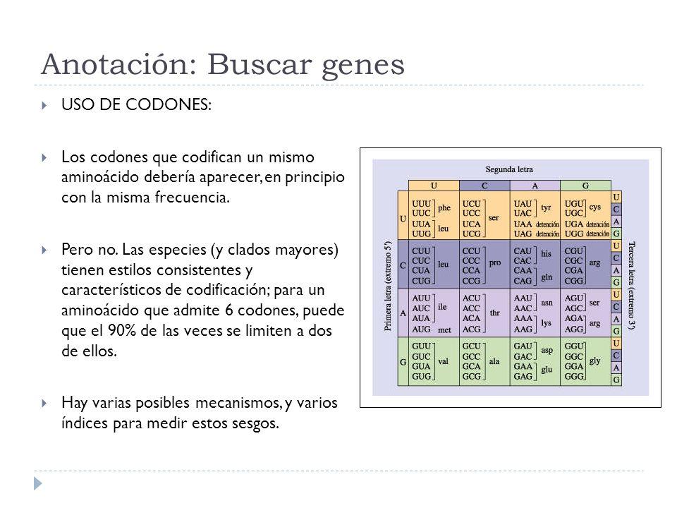 Anotación: Buscar genes