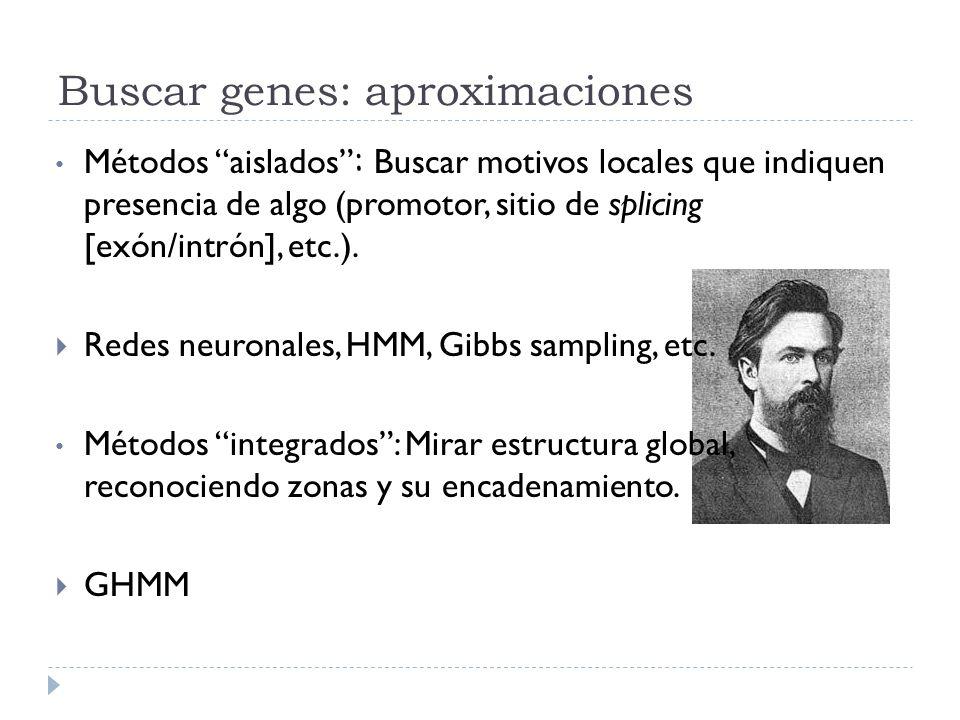 Buscar genes: aproximaciones