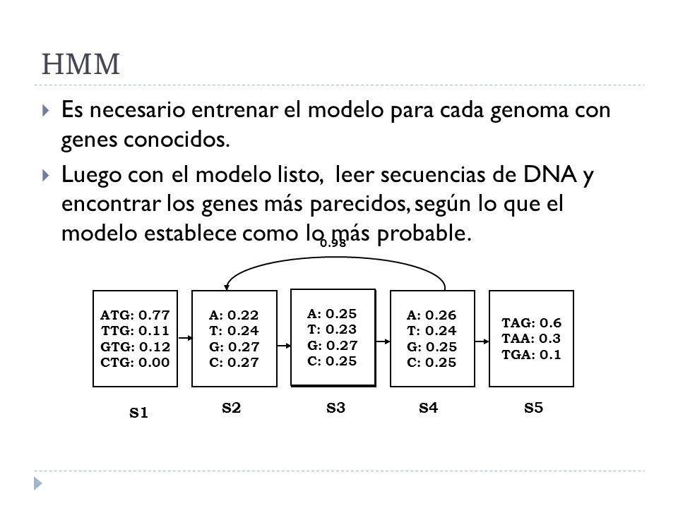 HMM Es necesario entrenar el modelo para cada genoma con genes conocidos.