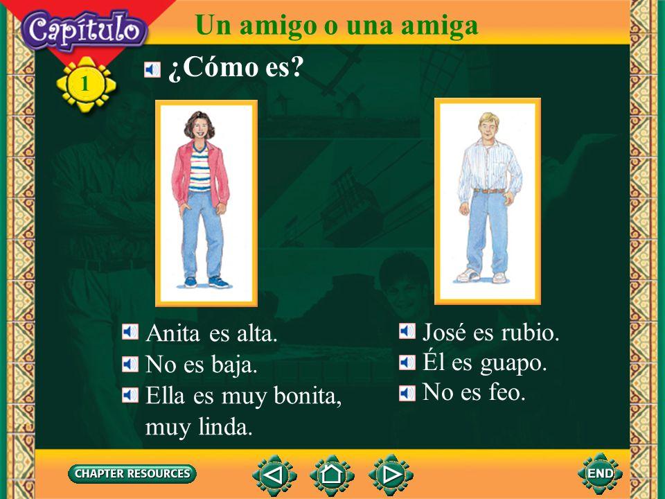 Un amigo o una amiga ¿Cómo es Anita es alta. José es rubio.