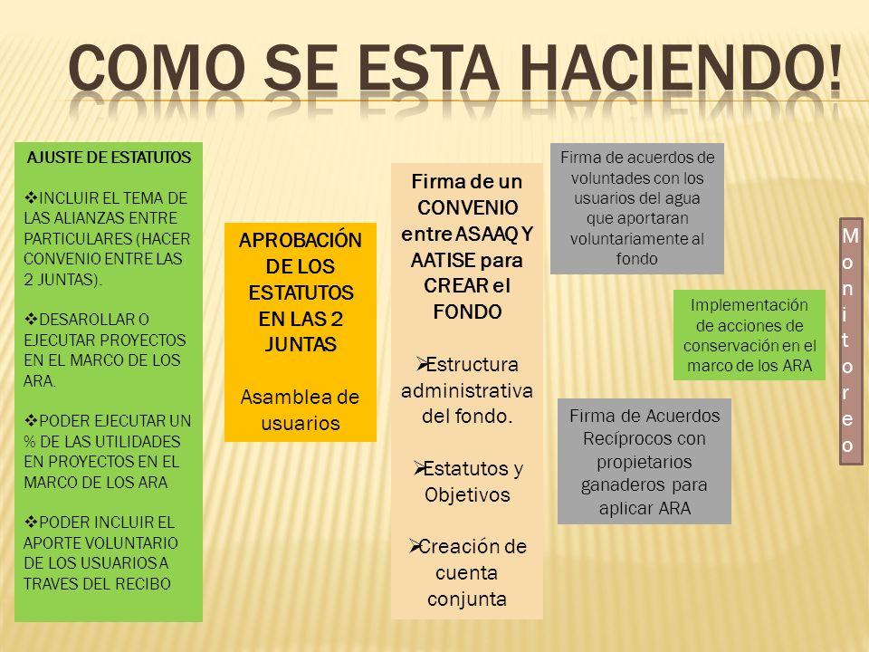 Como se esta haciendo! AJUSTE DE ESTATUTOS. INCLUIR EL TEMA DE LAS ALIANZAS ENTRE PARTICULARES (HACER CONVENIO ENTRE LAS 2 JUNTAS).