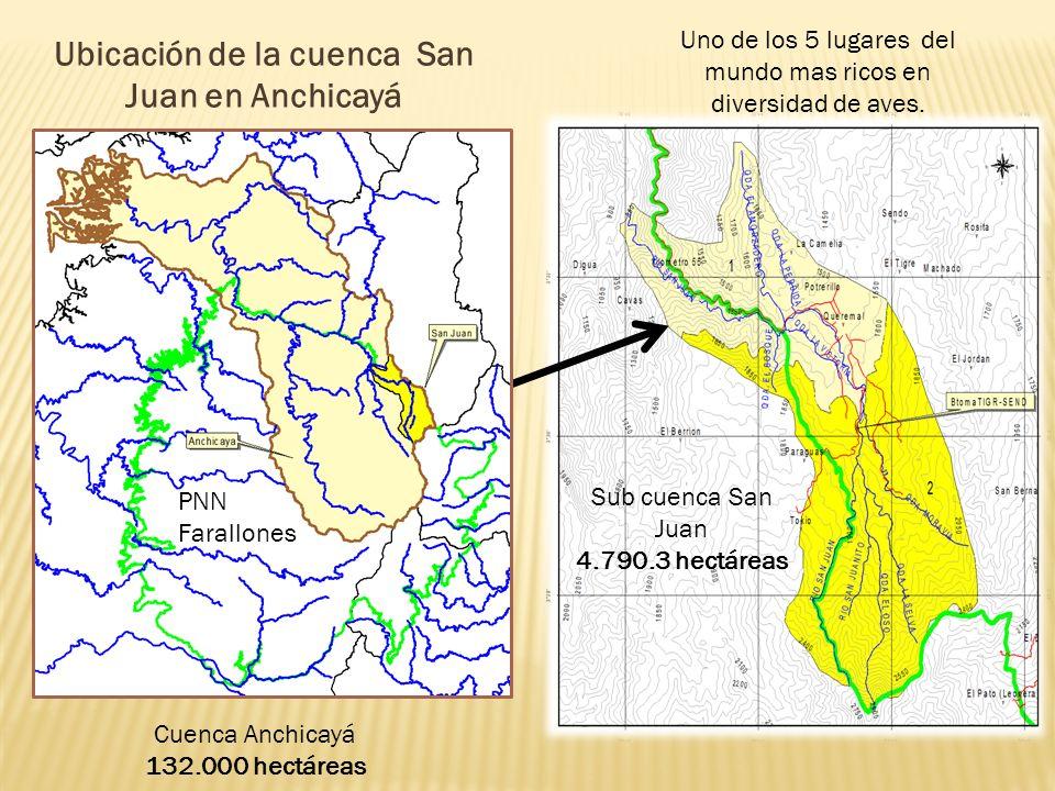 Ubicación de la cuenca San Juan en Anchicayá