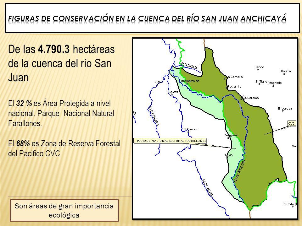 Figuras de conservación en la Cuenca DEL RÍO San Juan Anchicayá