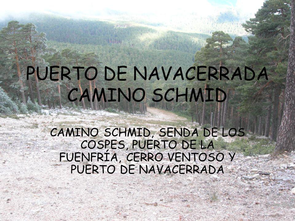 PUERTO DE NAVACERRADA CAMINO SCHMID