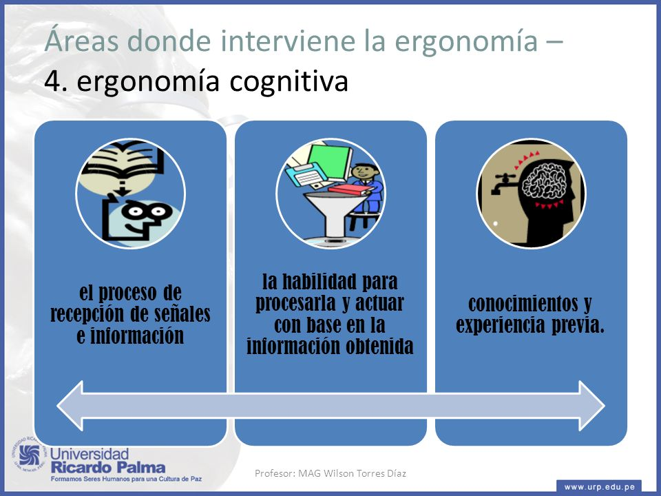 Áreas donde interviene la ergonomía – 4. ergonomía cognitiva