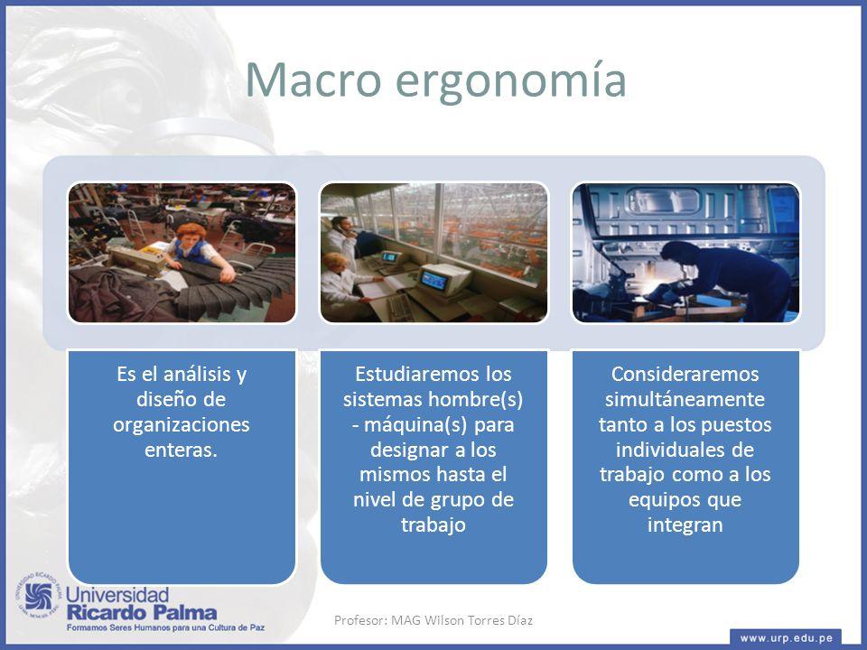 Macro ergonomía Profesor: MAG Wilson Torres Díaz