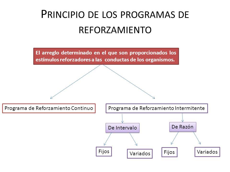 Principio de los programas de reforzamiento