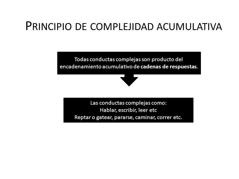 Principio de complejidad acumulativa