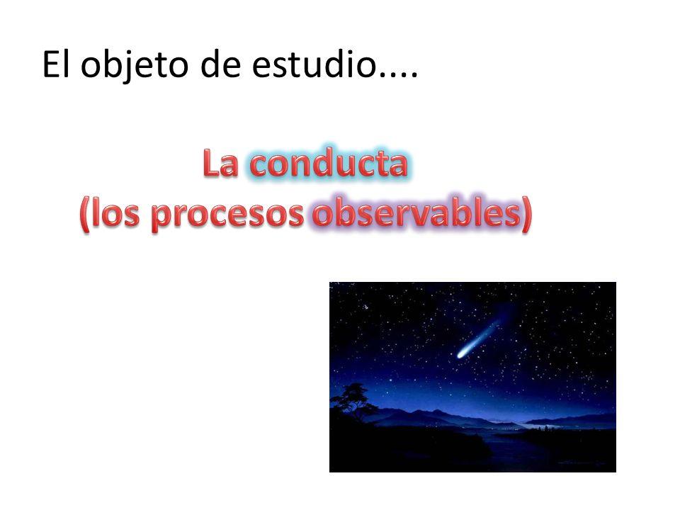(los procesos observables)