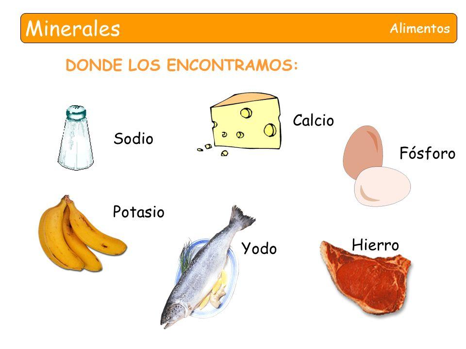 Nutrientes ppt descargar - En que alimentos encontramos magnesio ...