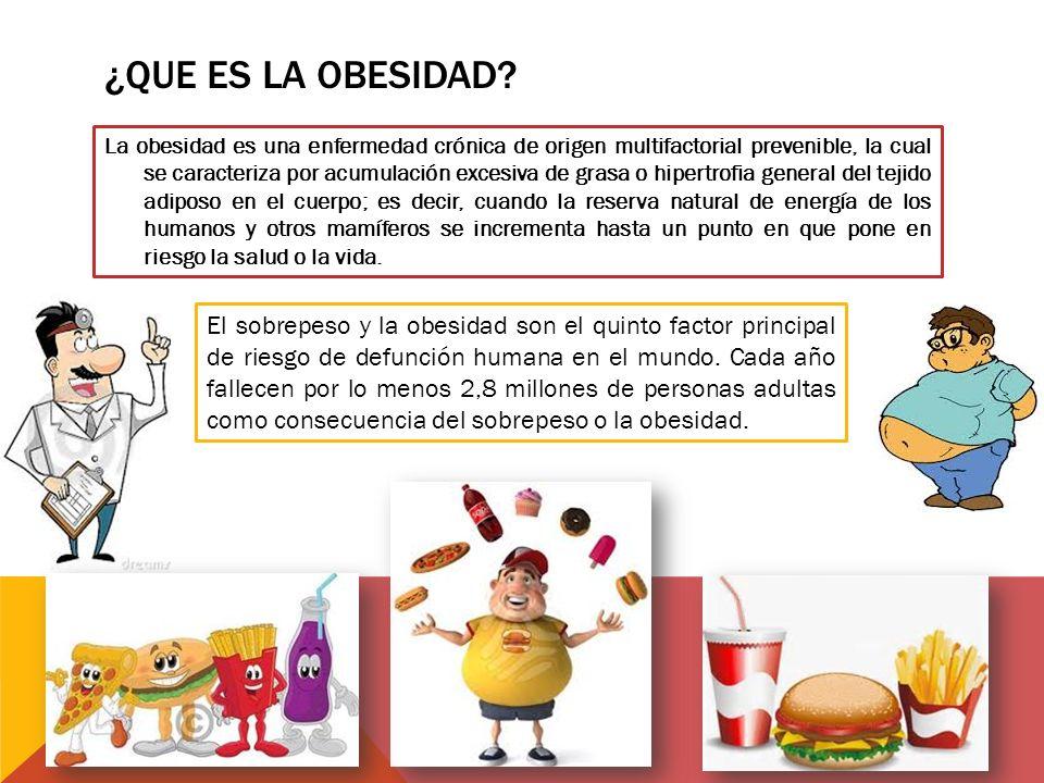 ¿Que es la obesidad