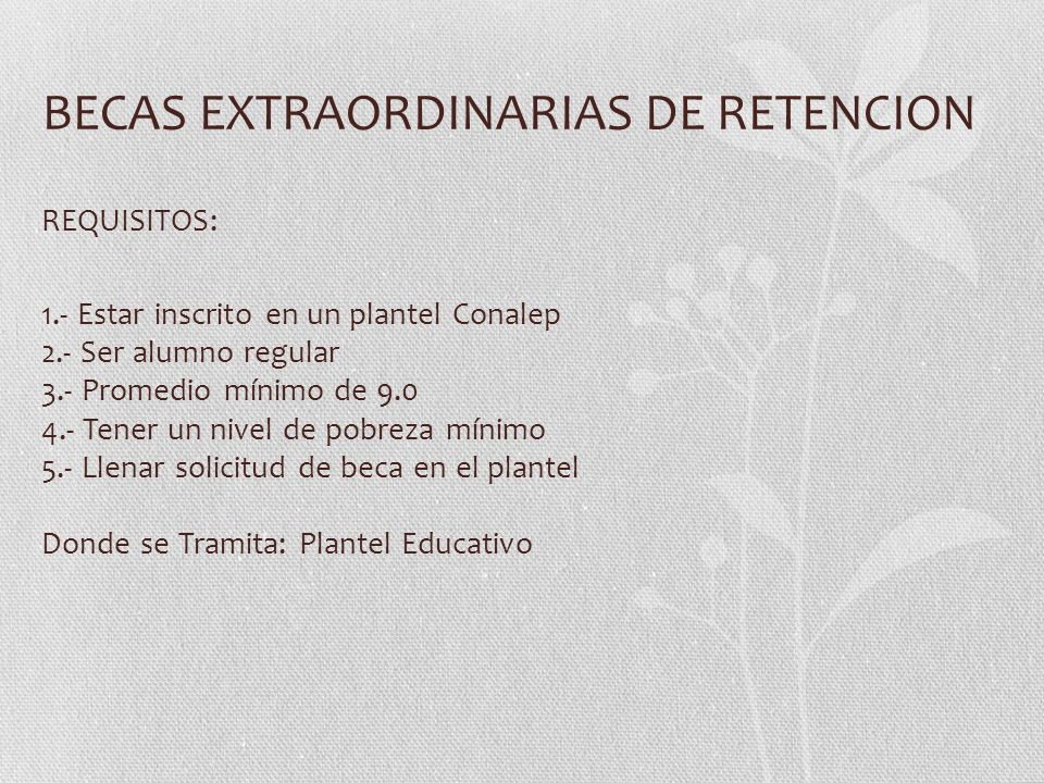BECAS EXTRAORDINARIAS DE RETENCION