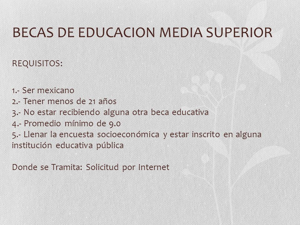 BECAS DE EDUCACION MEDIA SUPERIOR