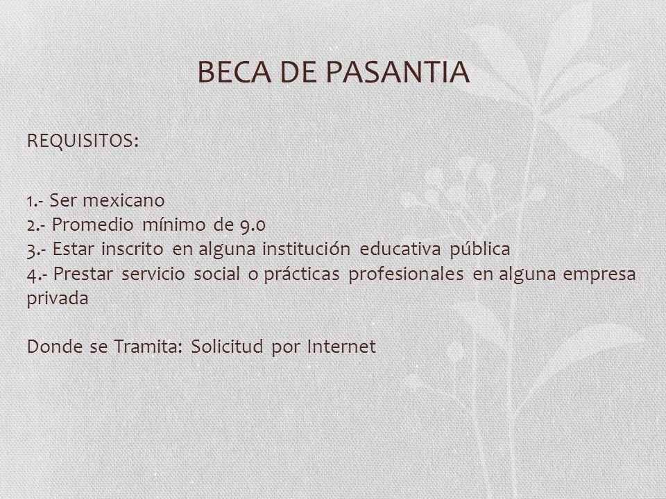 BECA DE PASANTIA
