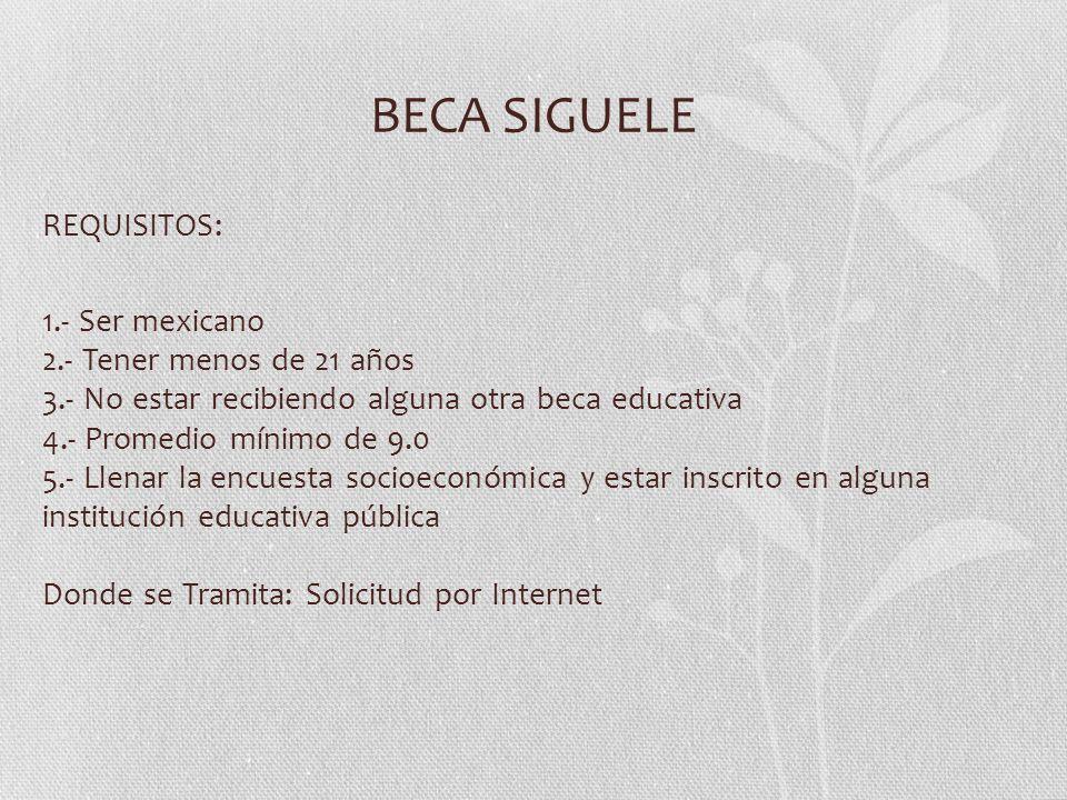 BECA SIGUELE