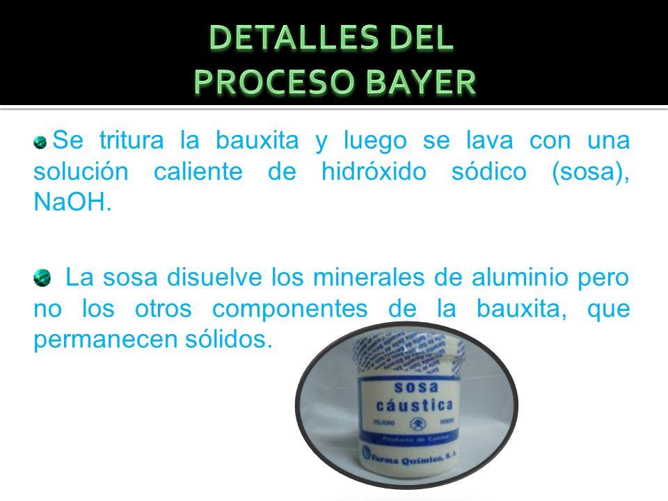 DETALLES DEL PROCESO BAYER