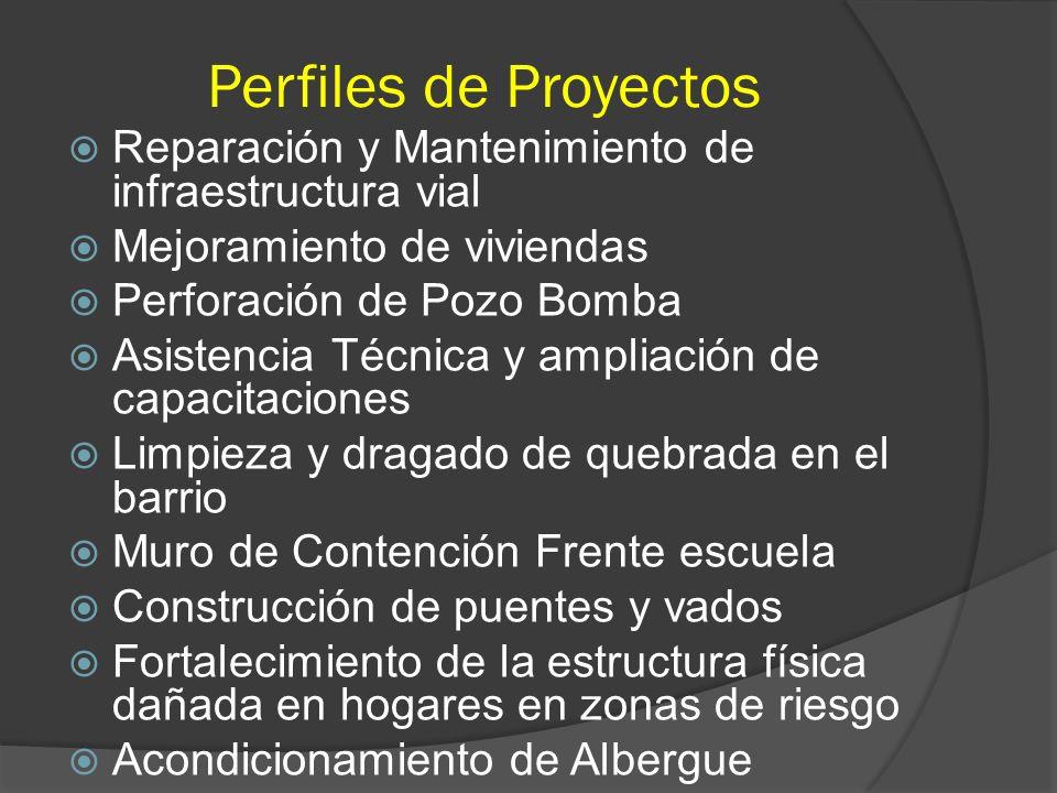 Perfiles de Proyectos Reparación y Mantenimiento de infraestructura vial. Mejoramiento de viviendas.
