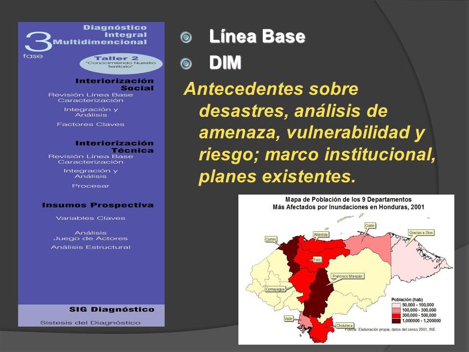 Línea Base DIM.