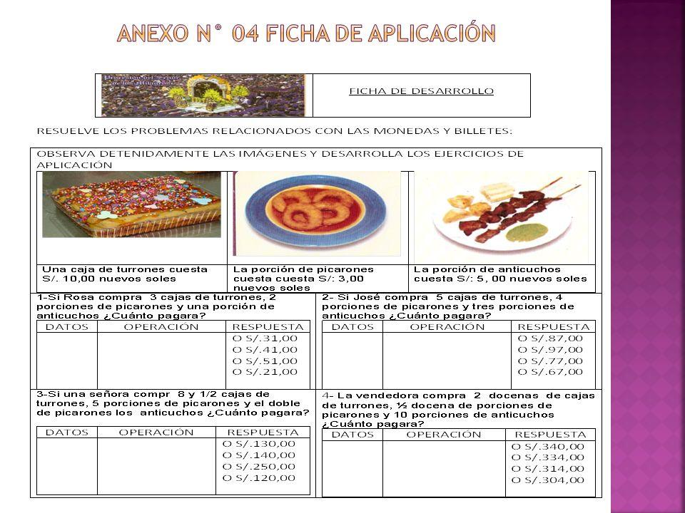 ANEXO N° 04 FICHA DE APLICACIÓN
