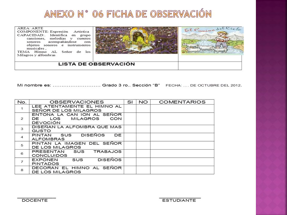Anexo n° 06 FICHA DE OBSERVACIÓN