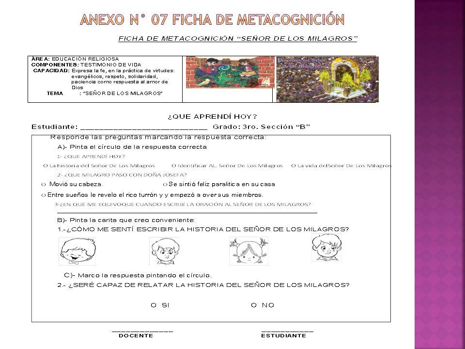 ANEXO N° 07 FICHA DE METACOGNICIÓN