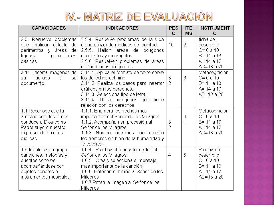 IV.- MATRIZ DE EVALUACIÓN