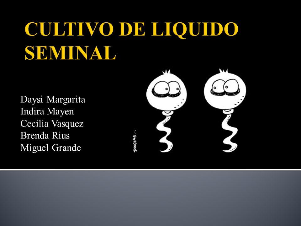 CULTIVO DE LIQUIDO SEMINAL