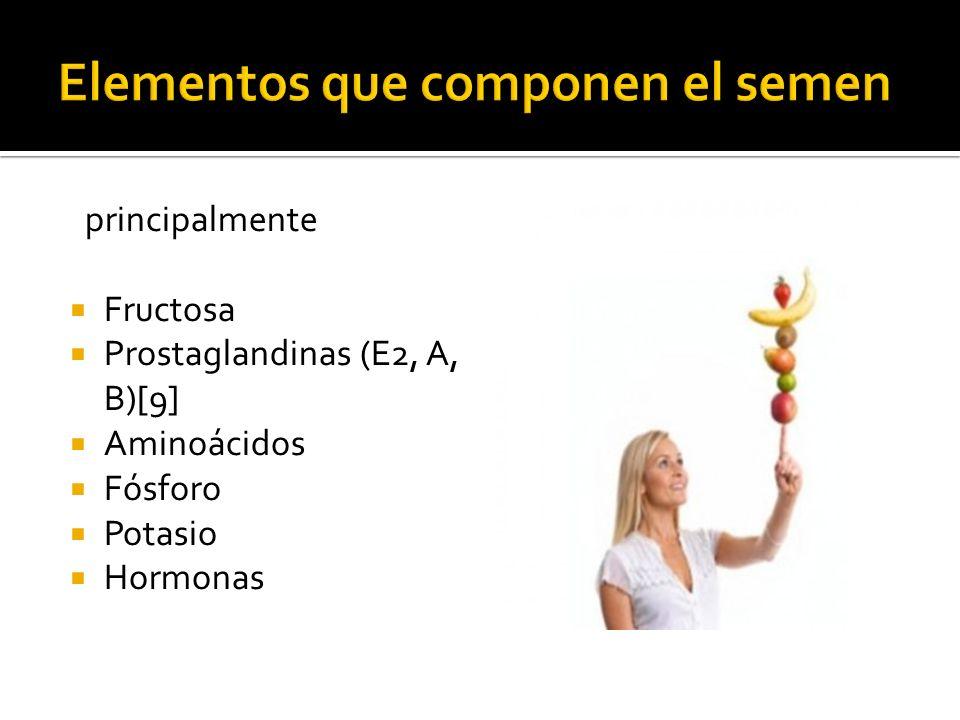 Elementos que componen el semen